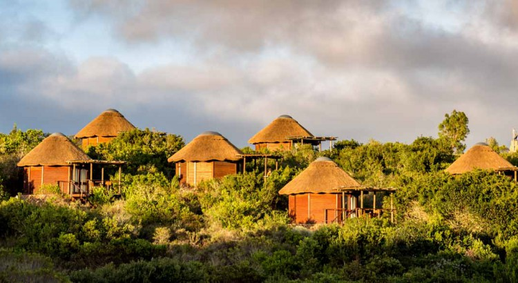 Chalets der Garden Route Game Lodge